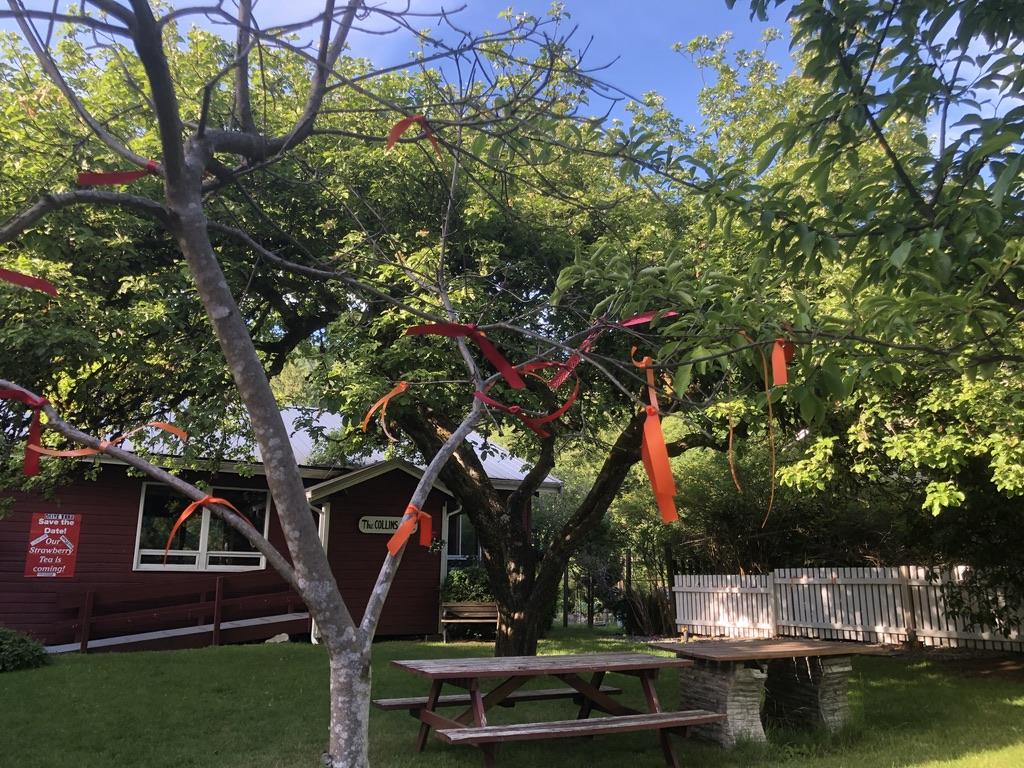 215 orange and red ribbons hang at Bowen Island United Church